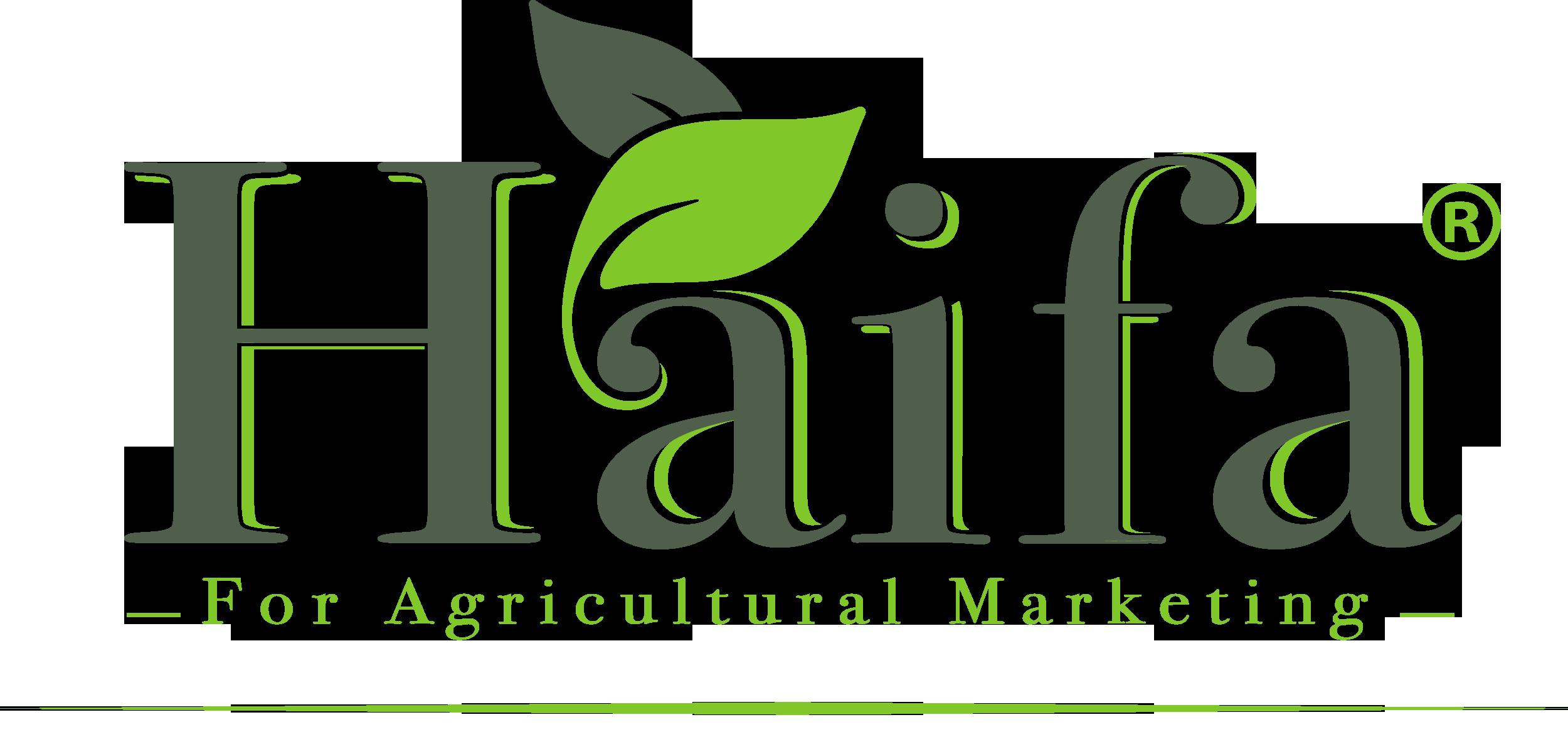Haifa HD Logo